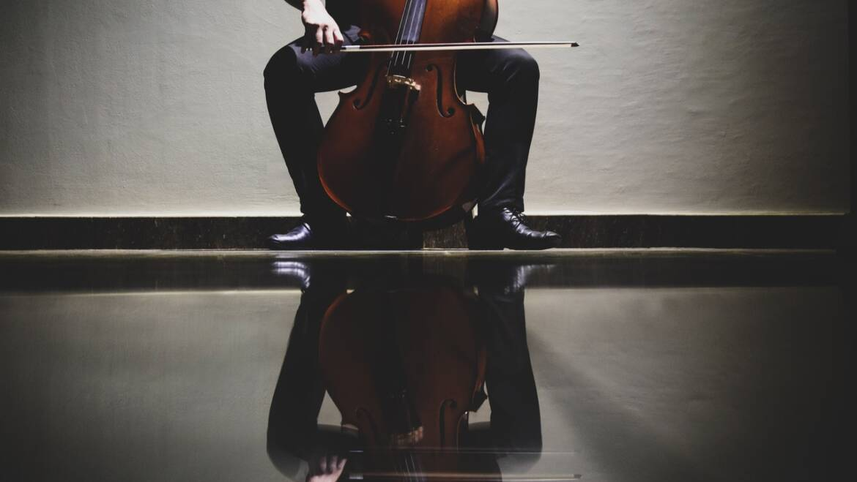 Violončelo